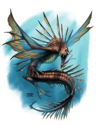 coral-drake